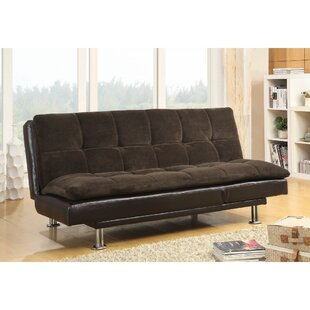 Delgadillo Casual Soothing Convertible Sofa
