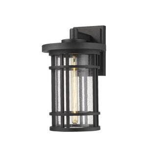 Hahne Outdoor Wall Lantern by Charlton Home