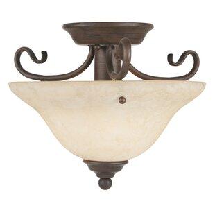 Shopping for Lewisboro Semi Flush Mount By Darby Home Co