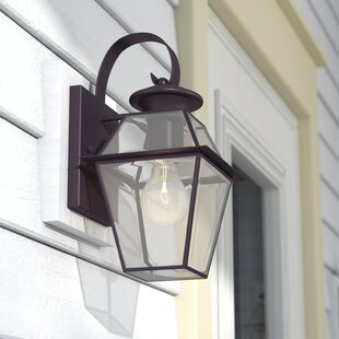 Orchard Lane 1-Light Outdoor Wall Lantern