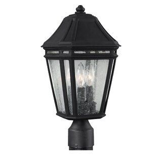 Comparison Maxine Outdoor Lantern Head By Darby Home Co