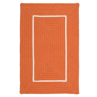 Maven Border in Border Braided Orange Indoor/Outdoor Area Rug