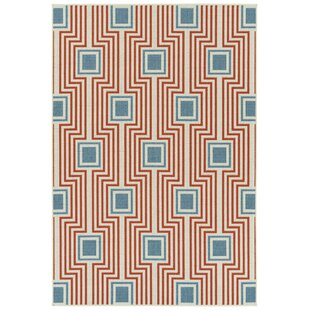 Earp Tangerine Indoor/Outdoor Area Rug