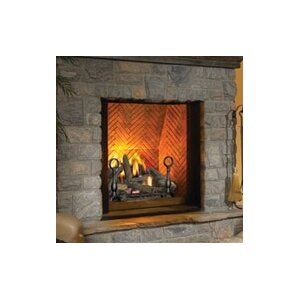 Dream Direct Vent Fireplace by Napoleon