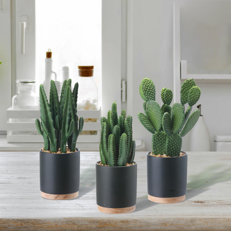 George Oliver 3 Artificial Cactus Plant In Pot Set Wayfair