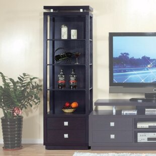 Spacious Tower Multimedia Cabinet