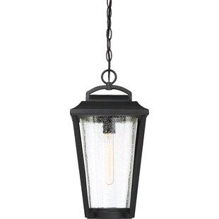 Gracie Oaks Lucienne 1-Light Outdoor Hanging Lantern