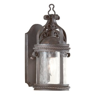 Darby Home Co Theodore Cottage 1-Light Outdoor Wall Lantern