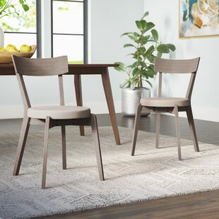 Affordable Price Bober Dining Chair (Set of 2) by Ivy Bronx Reviews (2019) & Buyer's Guide