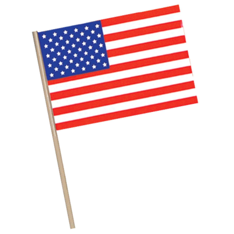 The Beistle Company Patriotic American Traditional Flag Wayfair