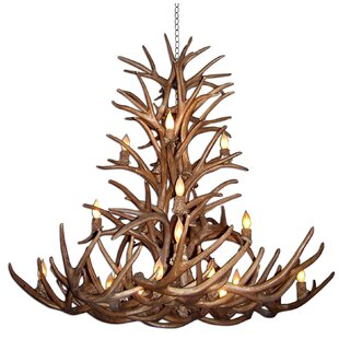 Loon Peak Attwood Antler Whitetail/Mule Deer Cascade 16-Light We have associated to option Chandelier
