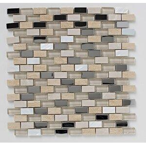 30cm x 30cm Stone/Glass/Metal/Pearl Mosaic Tile in Beige