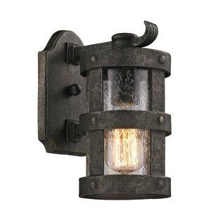 Longshore Tides Farnsworth 1-Light Outdoor Wall Lantern