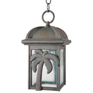 Check Prices Penfield 1-Light Outdoor Hanging Lantern By Alcott Hill