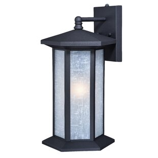 Martini 1-Light Outdoor Wall Lantern
