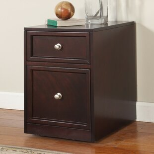 Beachcrest Home Veda 2-Drawer Lateral File