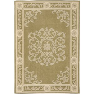 Carsen Olive/Natural Outdoor Rug