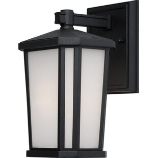 Brayden Studio Esters Outdoor Wall Lantern