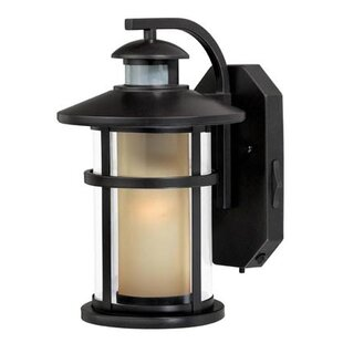 Affordable Enger 1-Light Outdoor Wall Lantern By Breakwater Bay