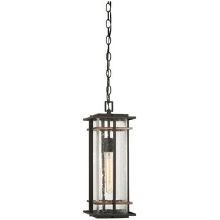 Plaisance 1-Light Outdoor Hanging Lantern