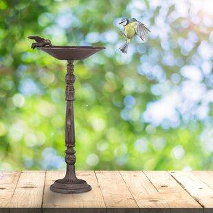 Whiddon Bird Bath Image