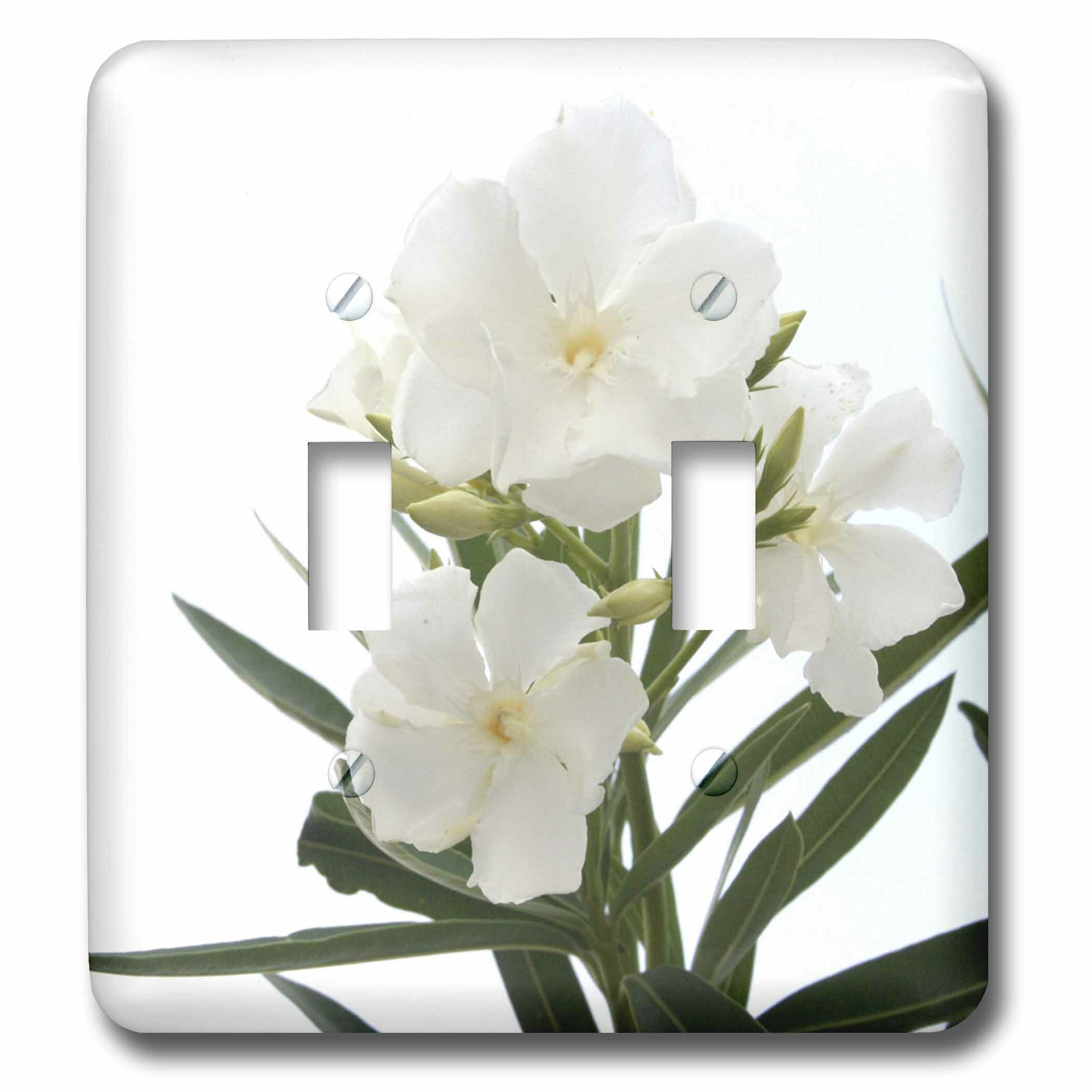 3drose Oleander Flower Tree Oleander Blossom Tropical Plant Buds 2 Gang Toggle Light Switch Wall Plate Wayfair