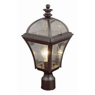 https://secure.img1-fg.wfcdn.com/im/42900776/resize-h310-w310%5Ecompr-r85/3632/36327617/weinberger-1-light-lantern-head.jpg