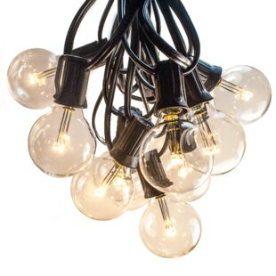 Globe String Light by Hometown Evolution, Inc.