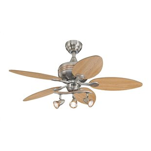 https://secure.img1-fg.wfcdn.com/im/42906923/resize-h310-w310%5Ecompr-r85/3900/39007292/44-carreon-5-blade-ceiling-fan.jpg