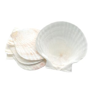 Nantucket Seafood Novelty Shell Baking Dish (Set of 4)