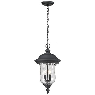 Darby Home Co Cashwell 2-Light Outdoor Pendant