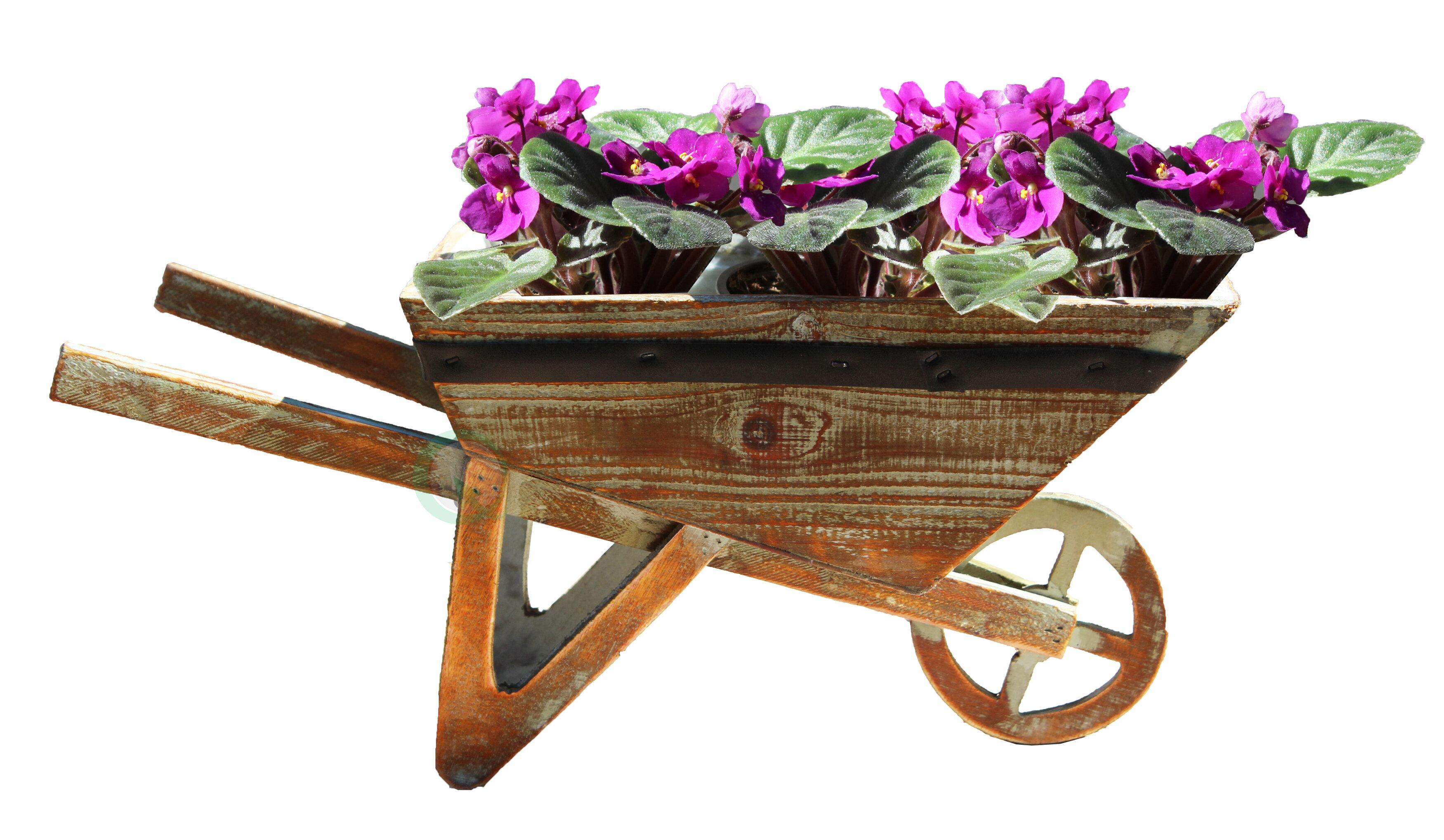 Gardenised Wood Wheelbarrow Planter Reviews Wayfair