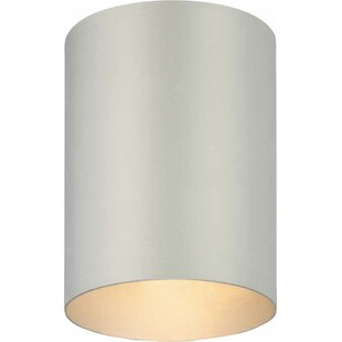 Wrought Studio Rangeworthy 1-Light Flush Mount
