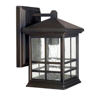 Latitude Run Macy 1-Light Outdoor Wall Lantern