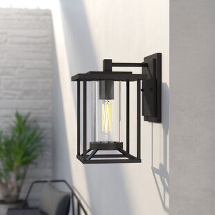 Crozier Outdoor Wall Lantern by Williston Forge