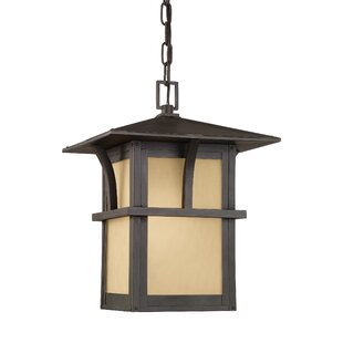 Bush Creek 1-Light Outdoor Hanging Lantern