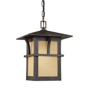 Bush Creek 1-Light Outdoor Hanging Lantern