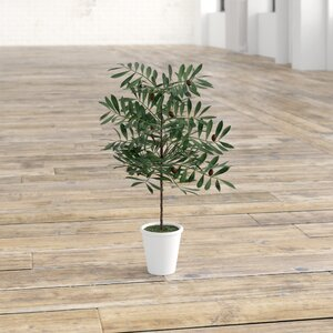 Faux Olive Trees In Pots