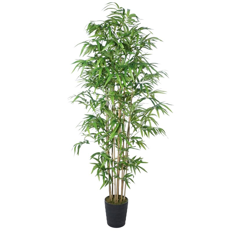 Bloomsbury Market 65 Artificial Bamboo Tree In Pot Reviews