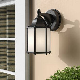 Bayou 1-Light Outdoor Wall Lantern