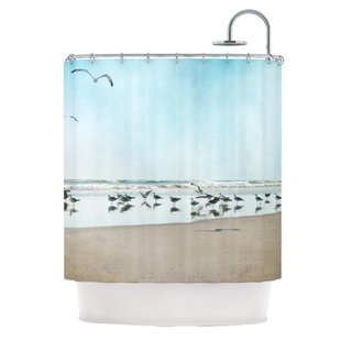Ocean Blue Shower Curtain Wayfair