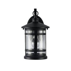 Brasher 1-Light Outdoor Wall Lantern