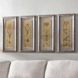 Perfect Blossom Sketch Framed Prints (Set Of 4)