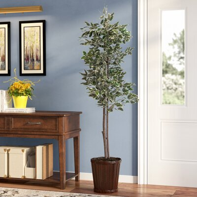Alcott Hill Economy Artificial Potted Natural Variegated Ficus Tree in Basket