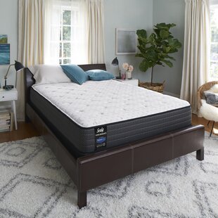 Response Performance 12'' Plush Mattress and Box Spring By Sealy