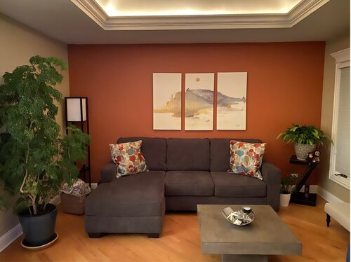 Orange Wall Art Room Design Ideas Wayfair