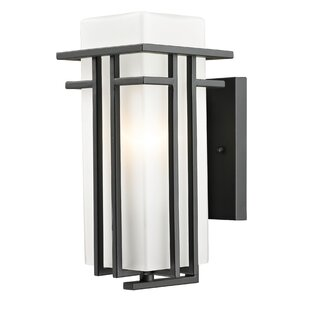 Winston Porter Weitzel 1-Light Outdoor Sconce