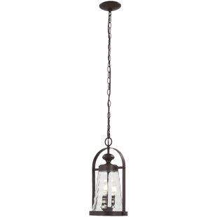 August Grove Elwell 3-Light Outdoor Hanging Lantern