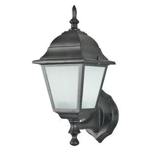 Winston Porter Dinh 1-Light Outdoor Sconce