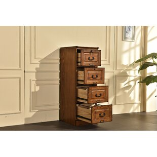 Darby Home Co Sarthak 4 Drawer Vertical Filing Cabinet